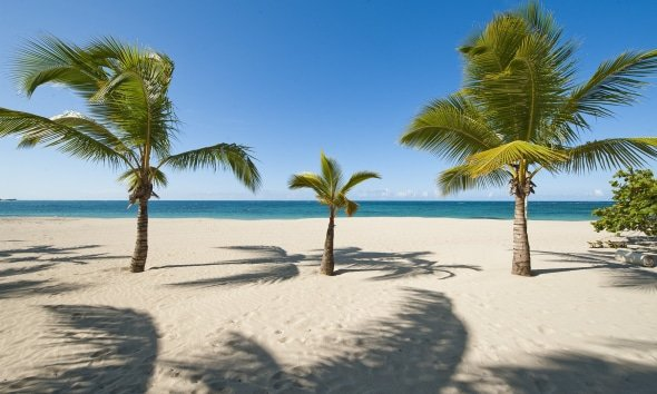 Playa Dorada Dominicaanse Republiek hangmat