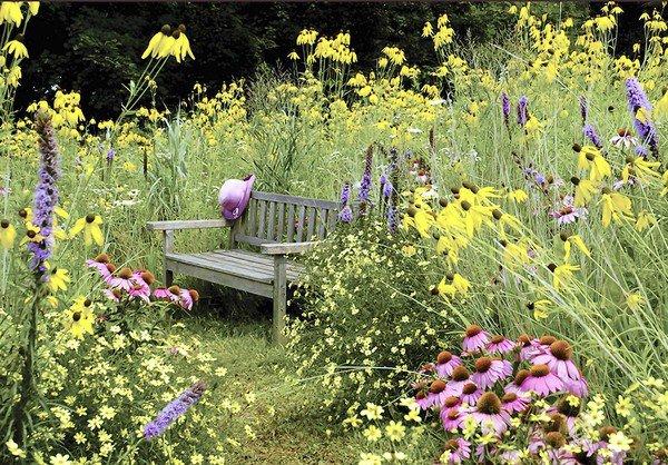 tuintrend 2016 natuurlijke eco tuin